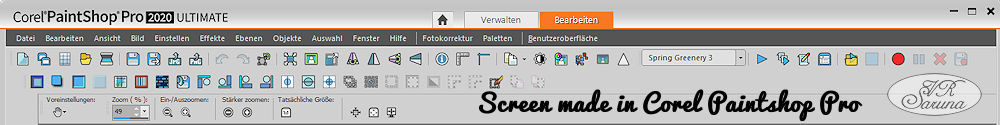 Screen PSP - Menüleiste Paintshop Pro 2020 Ultimate